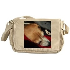 Let Sleeping Dogs Lie Messenger Bag