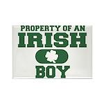 Property of an Irish Boy Rectangle Magnet (10 pack