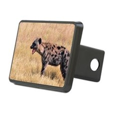 Hyena in grassland of Keny Hitch Cover