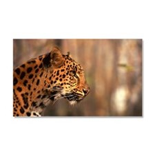 Profile of Siberian leopard Car Magnet 20 x 12