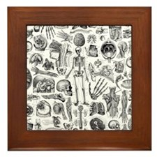 anatomy_W_queen_duvet Framed Tile