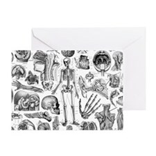 anatomy_white_pillow_cases Greeting Card