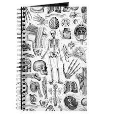 anatomy_W_twin_duvet Journal