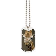 Cute Giraffe, Taiwan, Taipei, Taipei Zoo Dog Tags