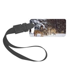 Pack of gray wolves in snow Luggage Tag