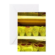 Flowers on shelves with netting Greeting Card