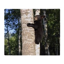 Black Bear Cub Climbing Tree, Minnes Throw Blanket