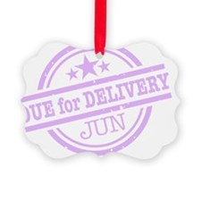 Delivery-JUNclr Ornament