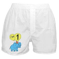 Elephant 1st Birthday Balloon Boxer Shorts