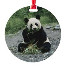 Cute Panda Round Ornament