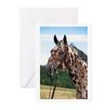 """Knabstrupper 3"" Greeting Cards (Pk of 10)"