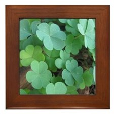 Clover Framed Tile
