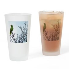 Red Crested Parrot Drinking Glass