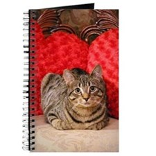 Sweetheart Daisy The Cat Journal