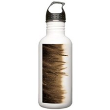 Wheat Field Water Bottle
