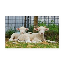 Buddy Lambs-signed by photogr Rectangle Car Magnet