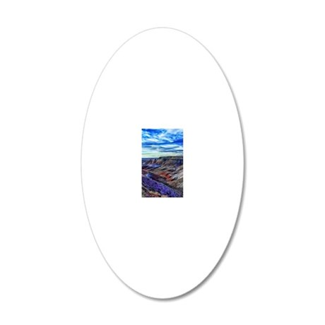 painted desert 20x12 Oval Wall Decal