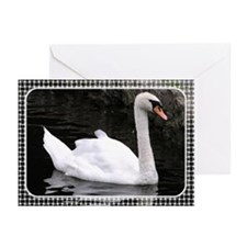 ...Swan... Note Card (Pk of 10)