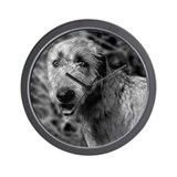 Irish Wolfhound Wall Clock