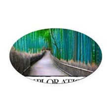 Inspirational Poster: The path of  Oval Car Magnet