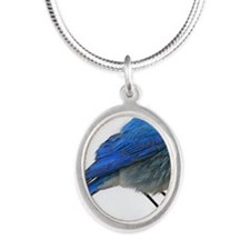 fb 10x14 Silver Oval Necklace