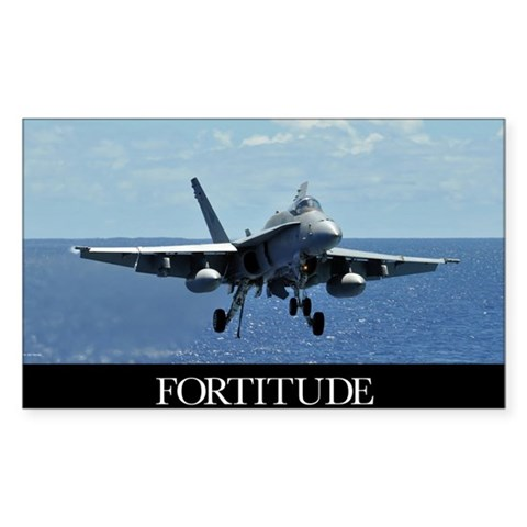 Motivational Poster: An F/A-18 Decal