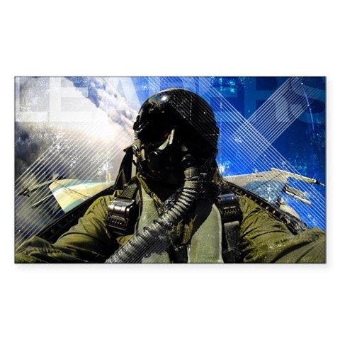 Air Force Grunge Poster: Leade Decal