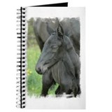 Unique Percheron Journal