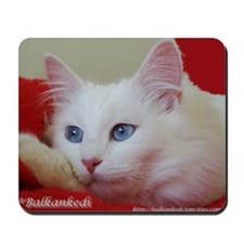 Funny Turkish angora Mousepad
