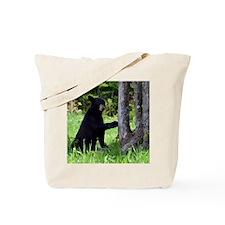 9x12_print 2 Tote Bag