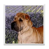 Cute Shar pei Tile Coaster