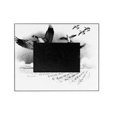 Canadian Geese Picture Frame