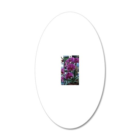 Purple Moth Orchid 20x12 Oval Wall Decal