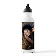 Young Chacma baboon Water Bottle