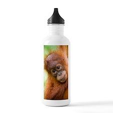 Young Sumatran orangut Water Bottle