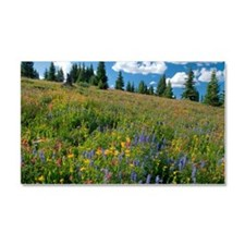 Wildflower meadow Car Magnet 20 x 12