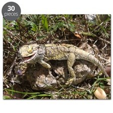 Spiny the Lizard Smiling Puzzle