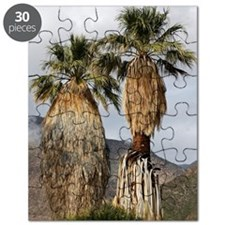 Washingtonia filifera fan palms Puzzle
