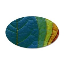 Leaves of Color Wall Decal