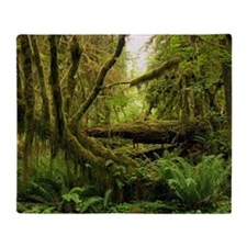 Temperate rainforest Throw Blanket