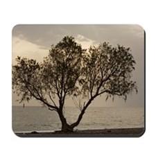Tamarisk tree Mousepad