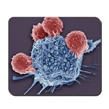 T lymphocytes and cancer cell, SEM Mousepad