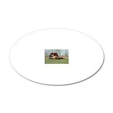 Payne's Prairie Wild Horses  20x12 Oval Wall Decal