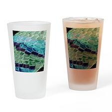Snake skin, SEM Drinking Glass