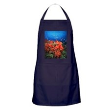 Coral and fish Apron (dark)