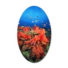 Coral and fish Wall Decal