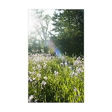 Wildflowers in field Decal