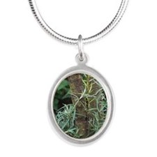 Sea buckthorn (Hippophae rham Silver Oval Necklace