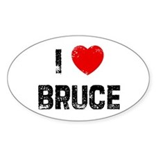I * Bruce Oval Decal