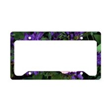 Rose flower and clustered bel License Plate Holder